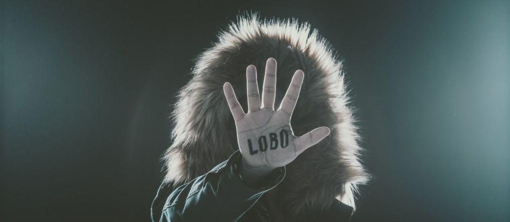 Mira, un Lobo_luis sousa__